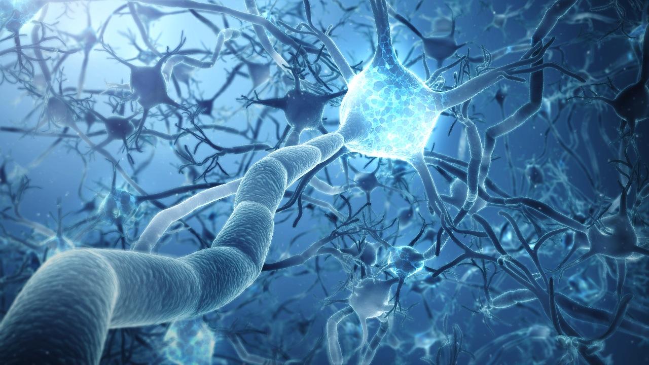 Header Image - Cabinet de Neuropsychologie